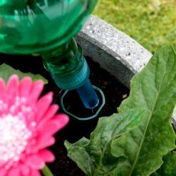 Flower Power Watering Globe placed in pot