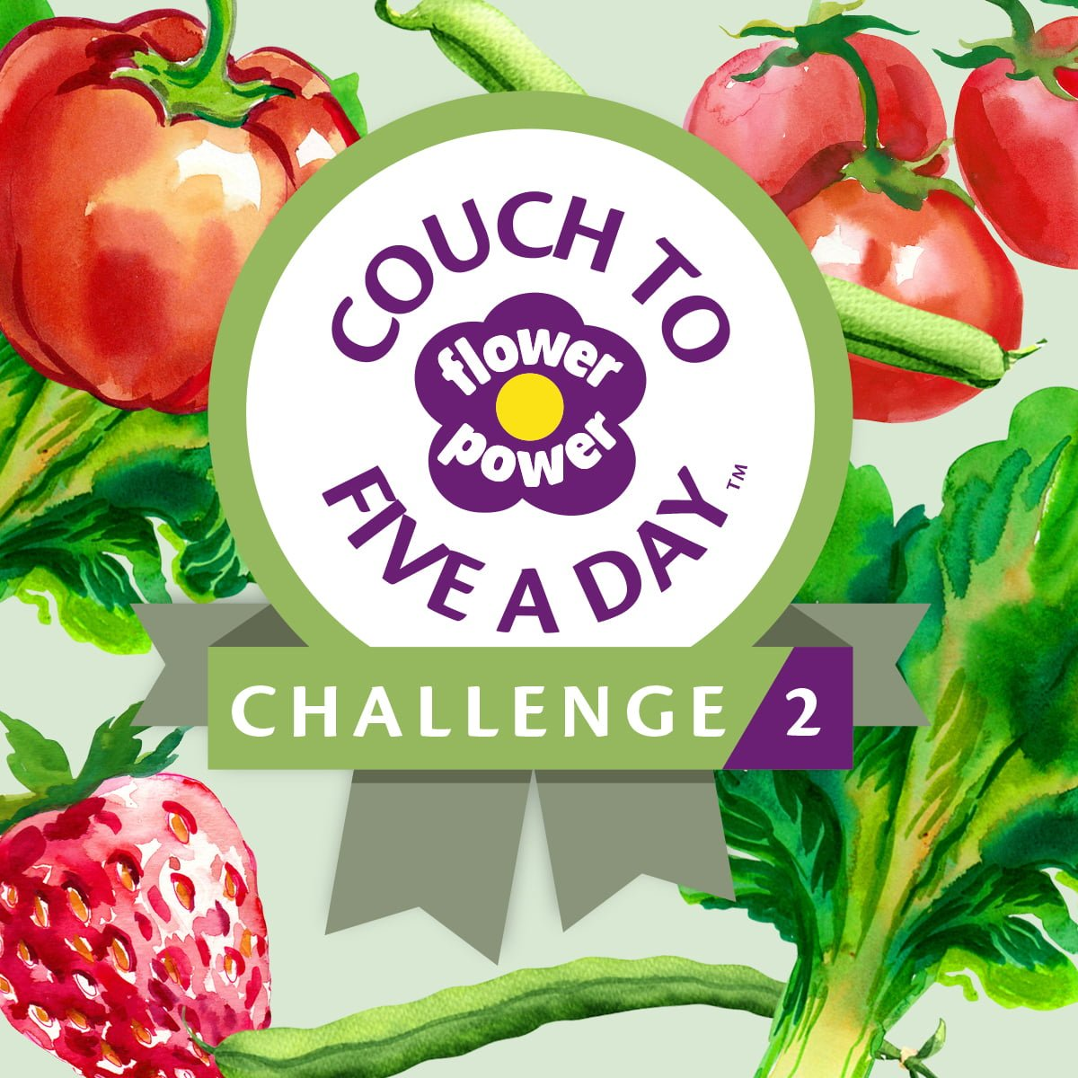 Couch to Five a Day 2 product image