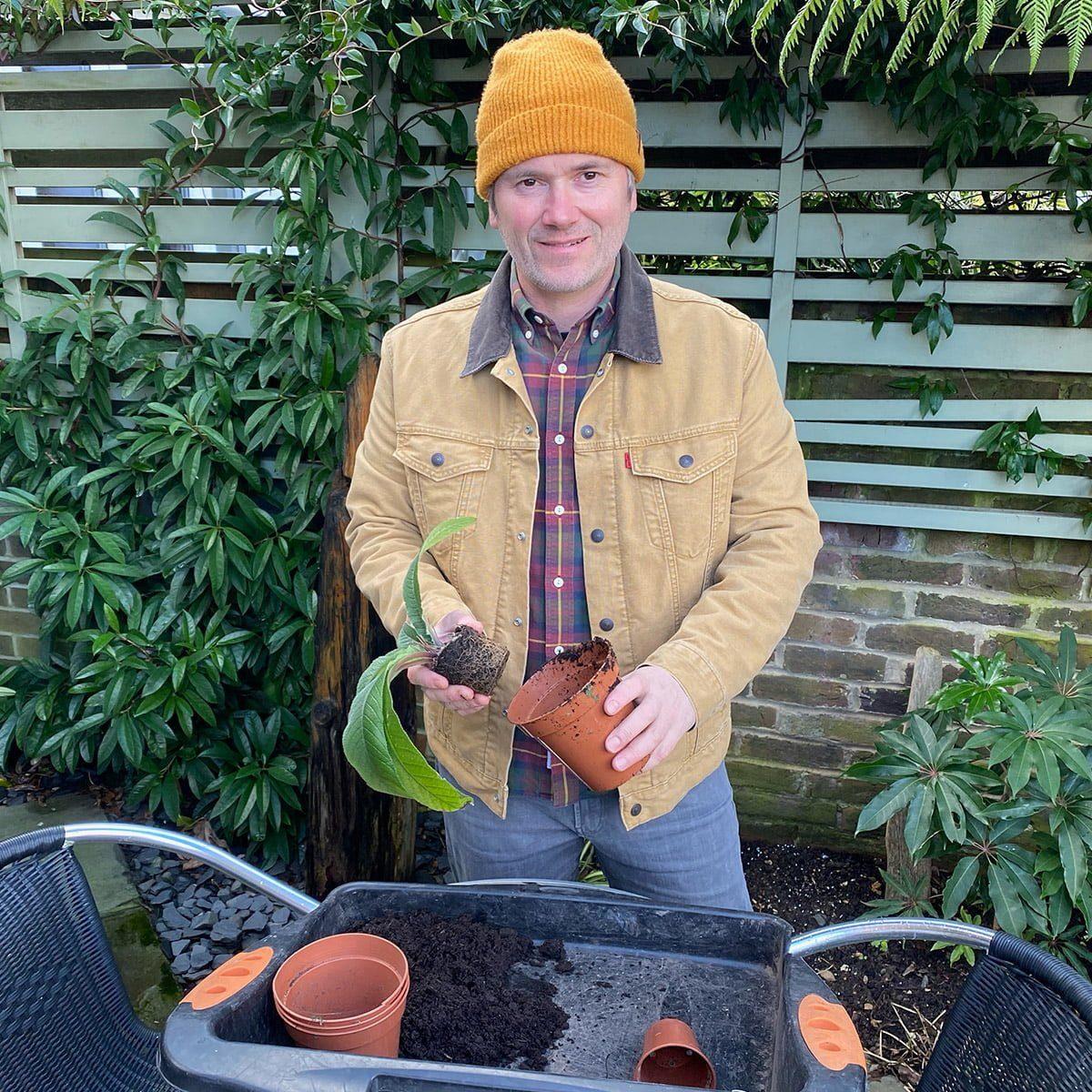 Martyn Cox potting on plug plants
