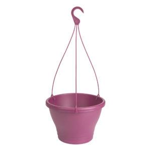 Corsica Hanging Basket vivid violet