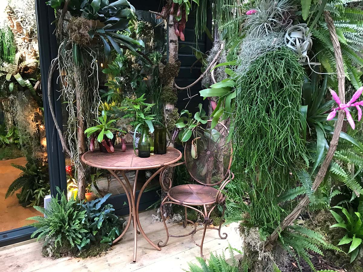 Forest in your Home - Chelsea Flower Show 2021