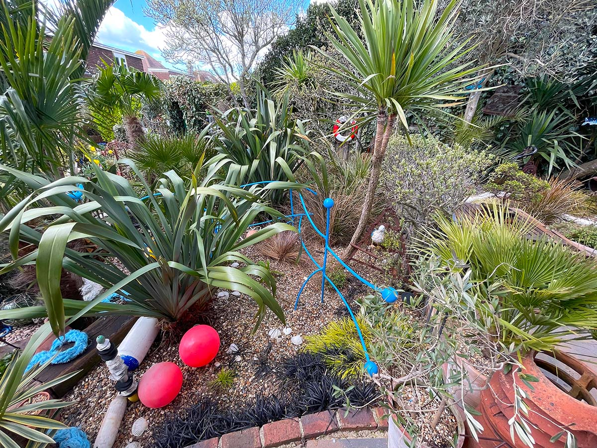 Torbay palm and phormiums at Driftwood garden